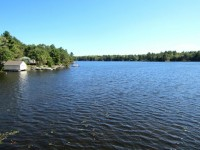 Beautiful Pine Lake in Muskoka