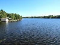 Beautiful Pine Lake in Muskoka